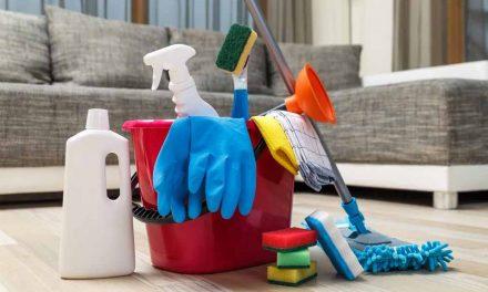 Implicações da equiparação dos serviços de dedetização a serviços de limpeza