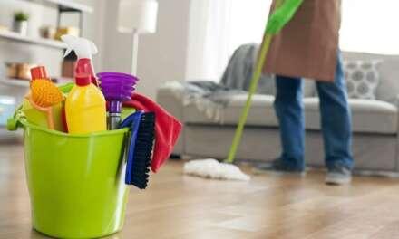 CAS aprova dedução permanente no IR de contribuição por empregado doméstico